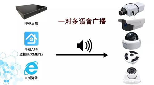 640.webp (3)_副本.jpg